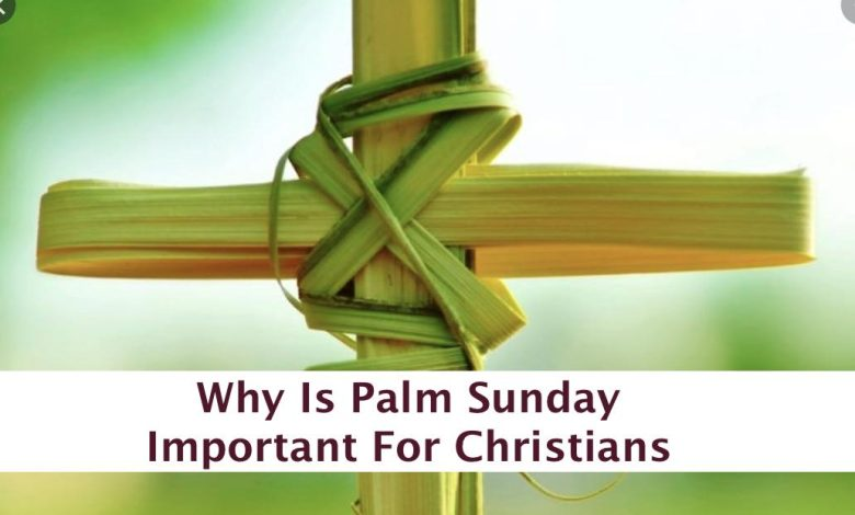 Why Is Palm Sunday Important For Christians